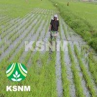 Walking Rice Weeder